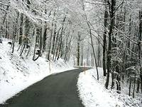 Winter_road_1