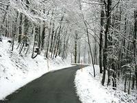 Winter_road_1